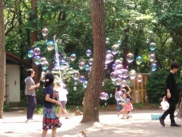 シャボン玉と遊ぶ子供たち